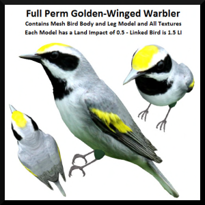 Lunar Seasonal Designs FP - Golden-Winged Warbler Ad