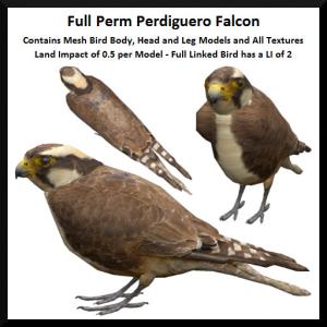 Lunar Seasonal Designs FP - Perdiguero Falcon Ad