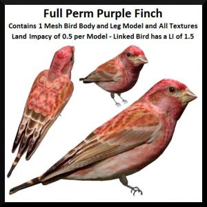 lunar-seasonal-designs-fp-purple-finch-ad