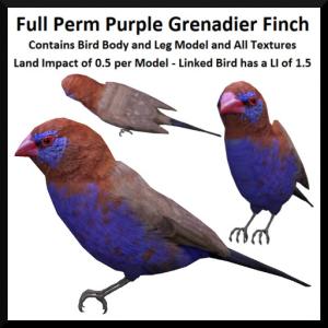 lunar-seasonal-designs-fp-purple-grenadier-finch-ad