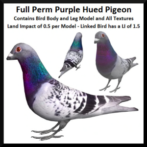 lunar-seasonal-designs-fp-purple-hued-pigeon-ad