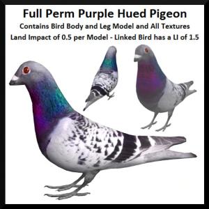lunar-seasonal-designs-fp-purple-hued-pigeon-ad