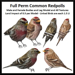lunar-seasonal-designs-fp-common-redpolls-ad