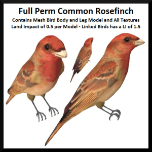 lunar-seasonal-designs-fp-common-rosefinch-ad