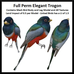 lunar-seasonal-designs-fp-elegant-trogon-ad