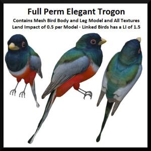 lunar-seasonal-designs-fp-elegant-trogon-ad