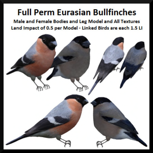 lunar-seasonal-designs-fp-eurasian-bullfinches-ad