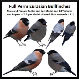 lunar-seasonal-designs-fp-eurasian-bullfinches-ad